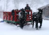 bearcat-stables-winter