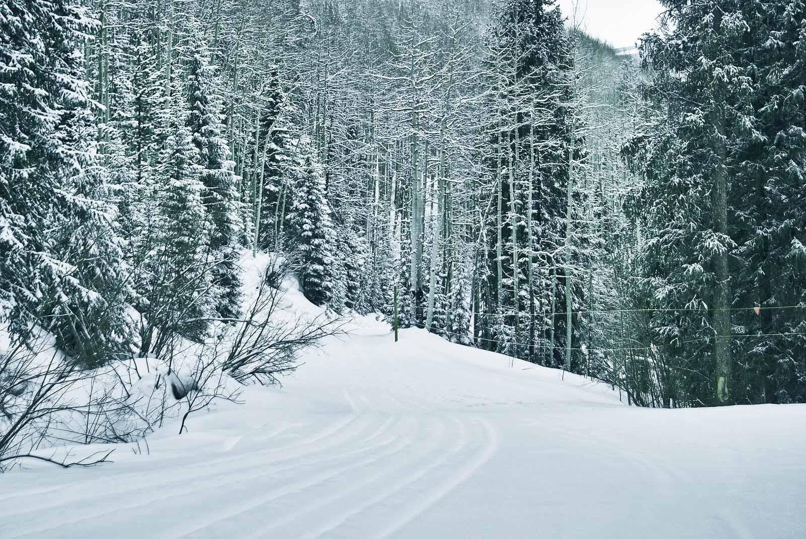 Colorado Rocky Mountain Winter Vacation Activities & Planning